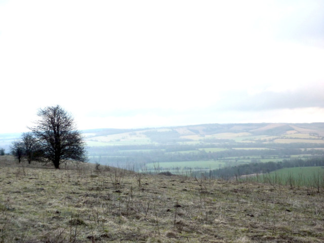 Beacon Hill on the South Downs Way