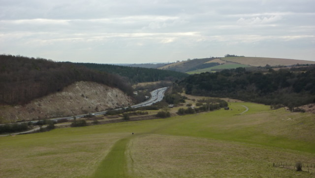 A view of the A3 from Butser Hill