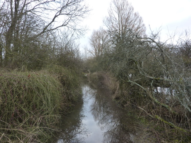 A flooded path near Exton on the South Downs Way