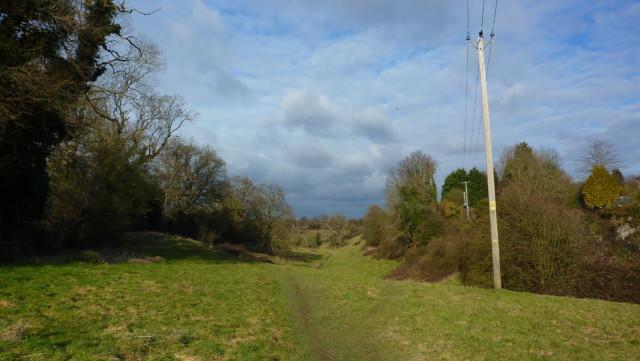 A grassy path