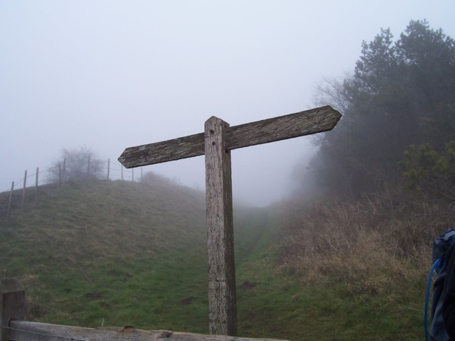 A completely blank signpost