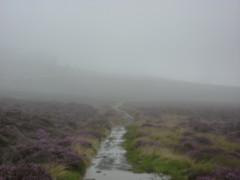 Picture of misty moorland, with the faint outline of a building
