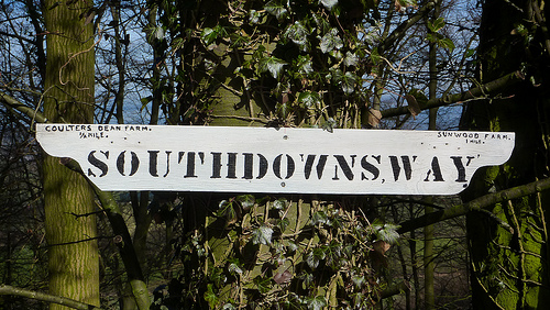 South Downs Way sign near North Lodge