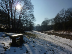 Bench in Hay Dale