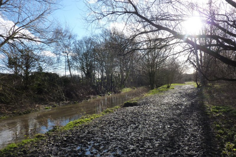 Muddy path in Hogsmill River Park