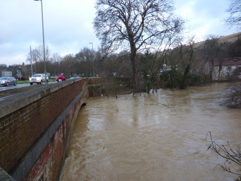 River Mole in flood