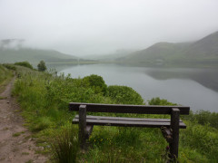 Bench at the side of St Mary's Loch