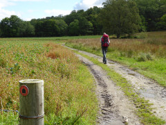 East Highland Way at Insh Farm