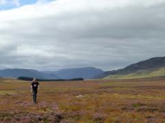 Moorland near Laggan on the East Highland Way