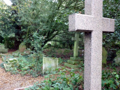 Overgrown graves at Old Barnes Cemetery