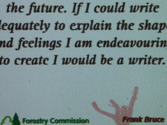 'If I could write adequately to explain the shapes and feelings I am endeavouring to create I would be a writer' - Frank Bruce