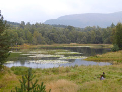Someone relaxing next to a small lochan