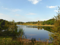 The River Spean seen near Kincraig