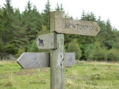 Wildcat trail sign near Newtonmore