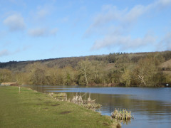 The River Thames near Mapledurham