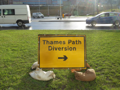Sign saying 'Thames Path Diversion'