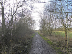 Muddy path near the village of Sonning