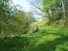 Picnic spot near Gill
