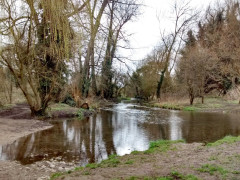 The River Cray at Foots Cray Meadow