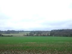 Farmland near High Elms