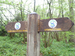 Sign marking the boundary of Spring Park and Three Halfpenny Wood
