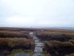 Paving stones on Great Shunner Fell
