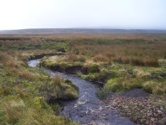 Crossing streams on Sleightholme Moor