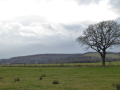 The Ridgeway, seen from the Thames Path