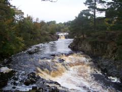 Low Force waterfall on the River Tees