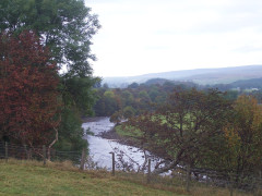 The River Tees, seen near Middleton-in-Teesdale
