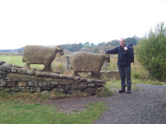 Petting some sheep statues, near Middleton in Teesdale