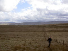 Walking over Hartleyburn Common on the Pennine Way