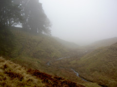 Hazel Burn on the Pennine Way, clouded by mist