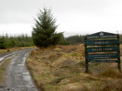 Battered signpost welcoming people to the Keilder Forest