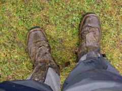 A very muddy pair of walking boots