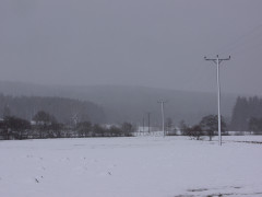 Fields and powerlines covered with snow in Byrness