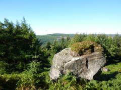 Large boulder on Byrness Hill