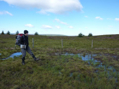 Surrounded by peat bog and pools of water