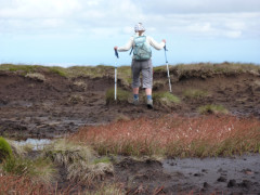 A woman storms off into the peat bog from the summit of the Cheviot