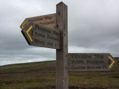 Signpost pointing in three directions, each claiming to be the Pennine Way, at the turn off for the Cheviot spur