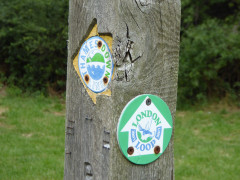 Thames Down Link and London LOOP waymarks on a wooden post