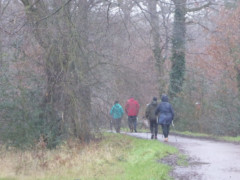 Nordic walkers stroll through the rain near Chingford