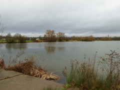 Lake at Roding Valley Open Space