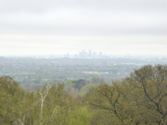 View of Canary Wharf from Addington Hill