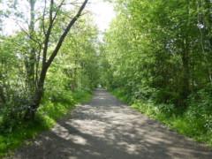 Set Valley Trail, near Hayfield