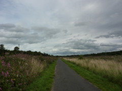 A cyclepath near Carlisle
