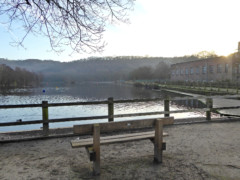 Bench looking out onto the mill pond at Etherow Country Park