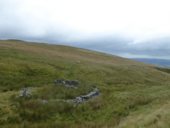 Sheepfold on Bonscale Pike