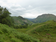 Woodland near the foot of Hartsop above How