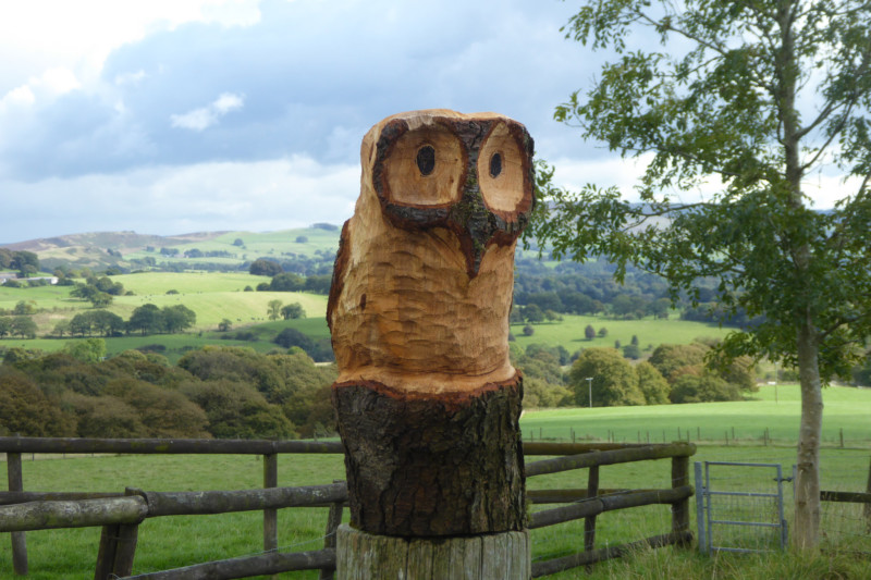 A carved wooden owl